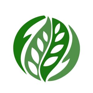 پالیز دنیای سبز